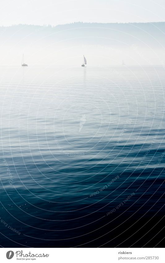 sail away Wasser ruhig Umwelt Herbst See Nebel Zukunft Abenteuer Schifffahrt Segeln Segelboot Segelschiff