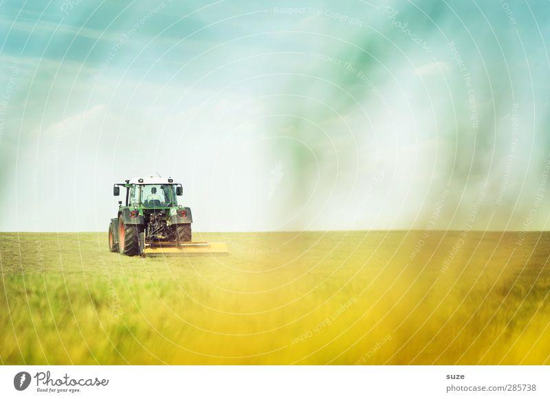 Landarbeit Himmel Natur blau grün Sommer Landschaft Umwelt Wiese Gras Horizont Arbeit & Erwerbstätigkeit natürlich Feld Erde Schönes Wetter Urelemente