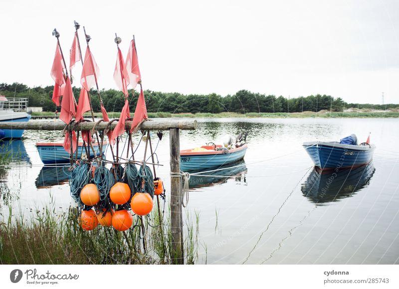 Fischfangkultur Himmel Natur Wasser Sommer Einsamkeit ruhig Landschaft Wald Umwelt Leben Wege & Pfade Küste Freiheit Zeit träumen Idylle