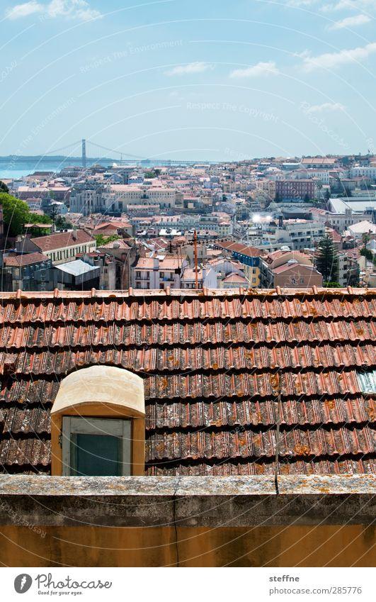 Around the World | Lisboa Stadt ästhetisch Dach Skyline Stadtzentrum Hauptstadt Altstadt Portugal Lissabon