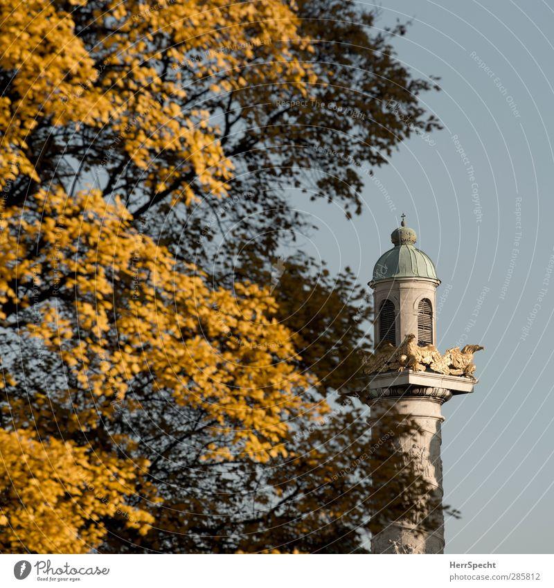 Herbst jetzt auch am Karlsplatz Baum Blatt gelb Architektur grau Gebäude Park Kirche Schönes Wetter Turm Bauwerk Herbstlaub Stadtzentrum Sehenswürdigkeit