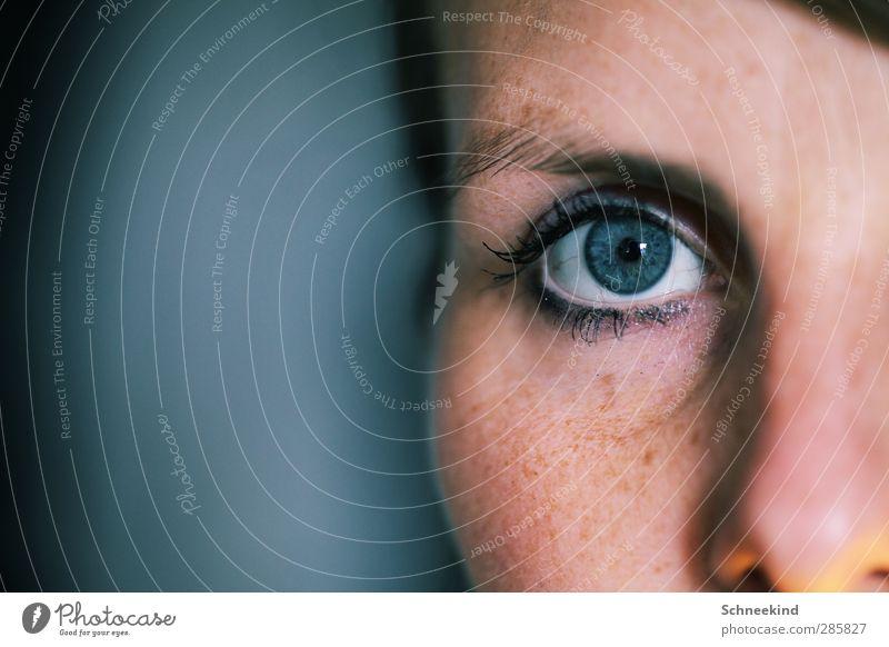 Blue Mensch Frau Jugendliche blau schön Erwachsene Gesicht Auge Junge Frau Leben feminin Kopf 18-30 Jahre glänzend Nase leuchten