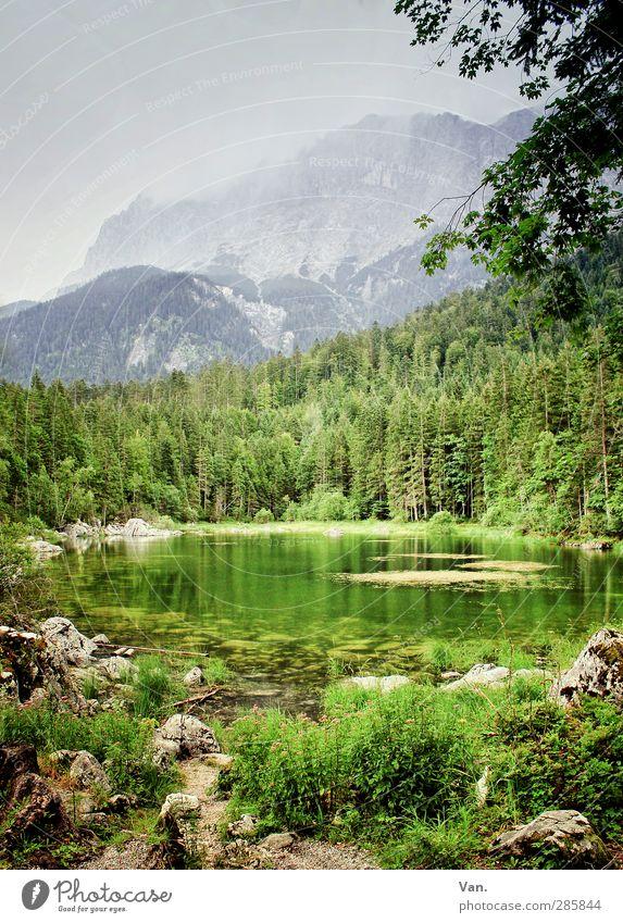 Alpengrün Natur Landschaft Pflanze Wasser Himmel Wolken Sommer Baum Sträucher Wald Felsen Teich grau ruhig Farbfoto mehrfarbig Außenaufnahme Menschenleer