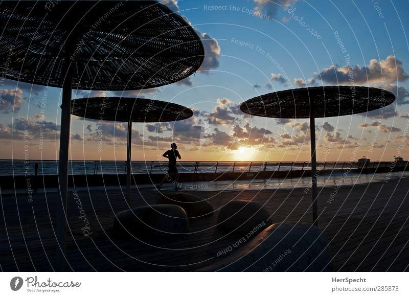 Abendlauf Mensch Himmel Ferien & Urlaub & Reisen Mann Sommer Sonne Meer Wolken Strand Erwachsene Sport Küste maskulin Idylle laufen Schönes Wetter