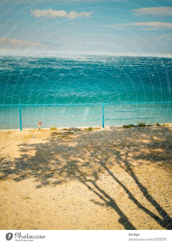 Bora Ferien & Urlaub & Reisen Sommerurlaub Meer Wellen Urelemente Sand Luft Wasser Himmel Unwetter Sturm Baum Küste Adria ästhetisch außergewöhnlich nass wild