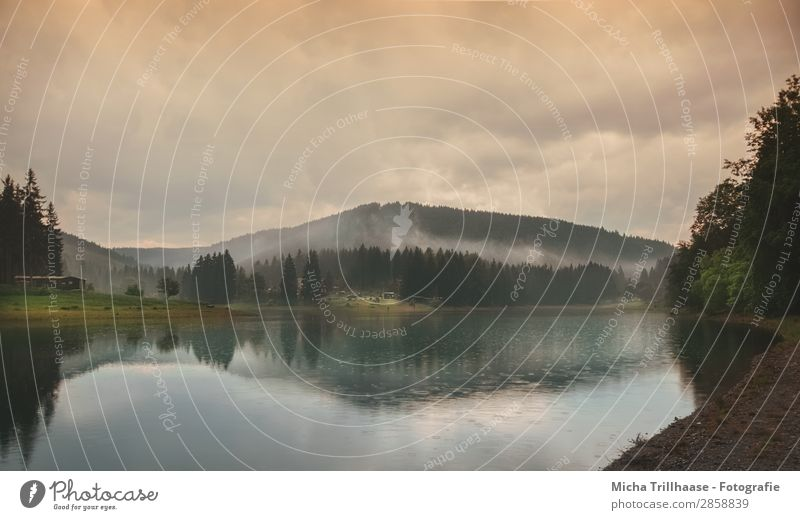 Regen und Nebel über dem See Natur Landschaft Wasser Himmel Wolken Sonnenlicht Wetter schlechtes Wetter Wald Berge u. Gebirge Seeufer Erholung leuchten