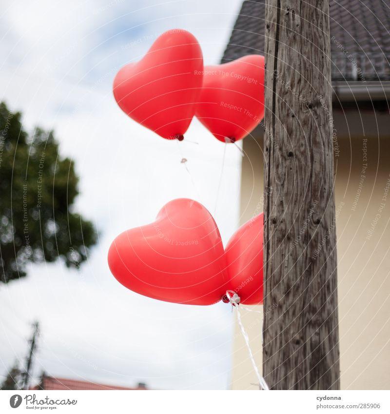 Von Herzen Himmel Baum rot Haus Umwelt Liebe Leben Gefühle Bewegung Glück Freiheit Feste & Feiern träumen Wind Geburtstag