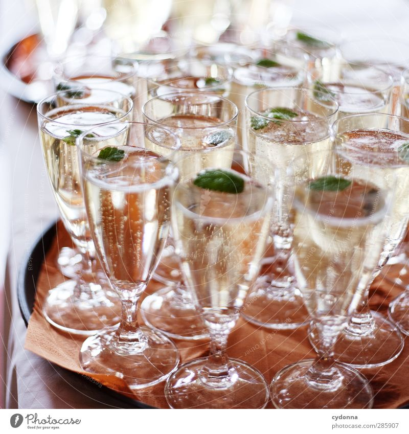 Sekt für alle! Getränk Alkohol Prosecco Sektglas Lifestyle Reichtum Party Veranstaltung Feste & Feiern Hochzeit erleben Erwartung Freude Glück Leben
