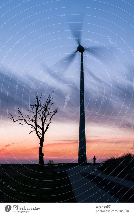 Lauf in die Dämmerung Mensch Himmel Mann Baum Erwachsene Horizont Energiewirtschaft Zukunft Technik & Technologie Windkraftanlage Dynamik Maschine Windrad