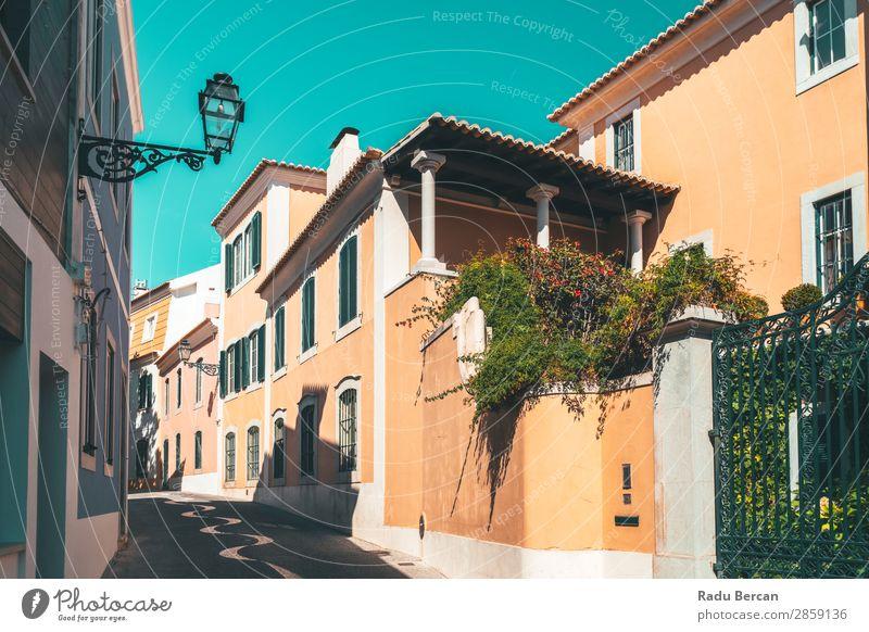Bunte Gebäude in der schmalen Straße in Cascais City of Portugal exotisch schön Ferien & Urlaub & Reisen Tourismus Sommer Haus Landschaft Pflanze Himmel