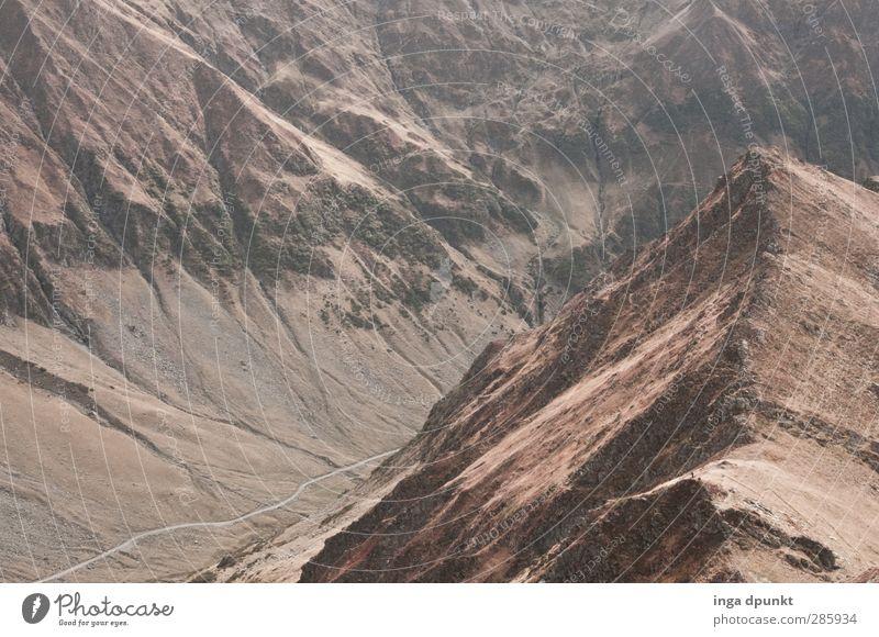 Rauf oder runter? Natur Pflanze Landschaft Umwelt Berge u. Gebirge Wege & Pfade Felsen wandern Europa Abenteuer Gipfel Rumänien Karpaten Siebenbürgen