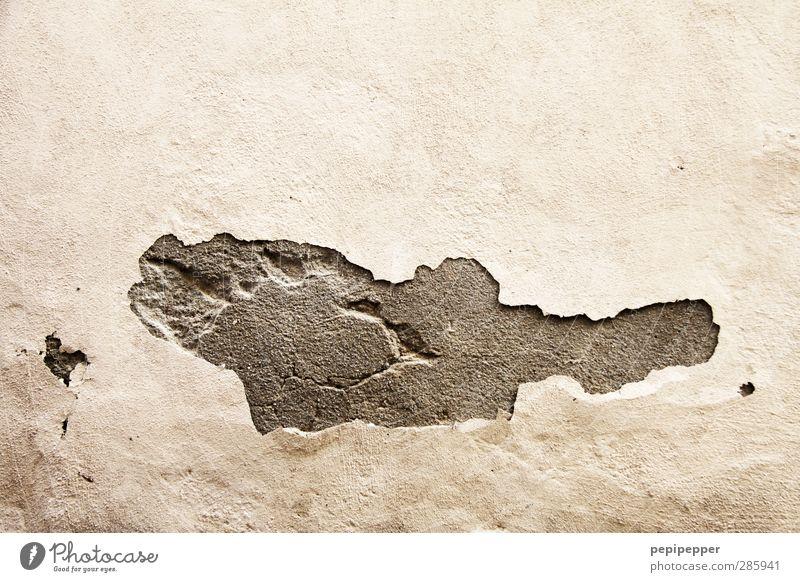 ein fisch namens wand(a) Fisch Haus Renovieren Altstadt Mauer Wand Tier 1 Stein Sand Zeichen Ornament alt Stadt Fassade Gedeckte Farben Außenaufnahme abstrakt