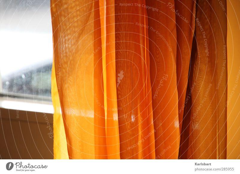 Orangenhaut. Farbe Einsamkeit ruhig Fenster Wand Mauer Innenarchitektur Linie orange Raum Wohnung Glas Zufriedenheit Häusliches Leben Lifestyle Idylle