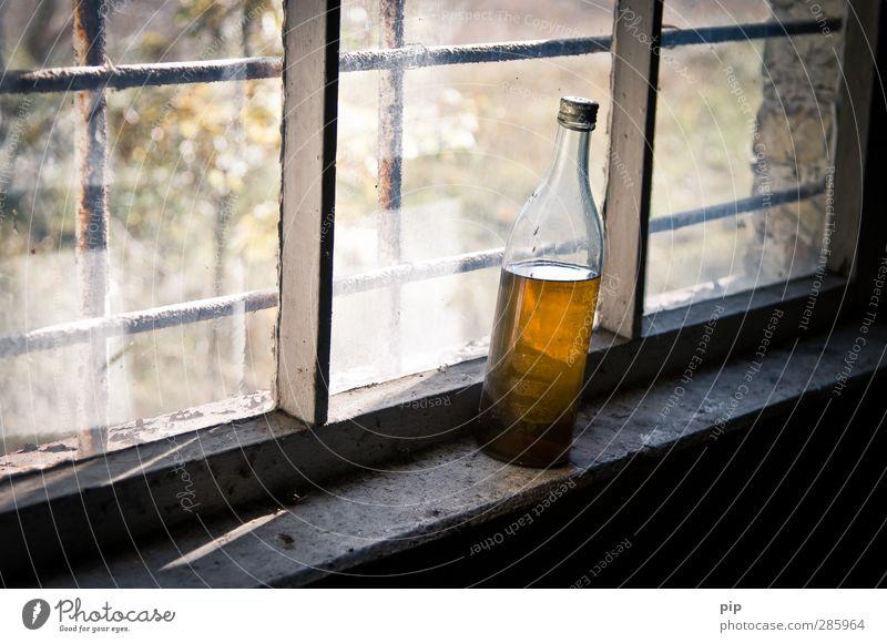 fusel Fenster Getränk Vergänglichkeit Vergangenheit Verfall Rost Flasche Alkohol Ruine Unbewohnt Fensterscheibe Sucht Fensterbrett Laster Spirituosen Gitterrost