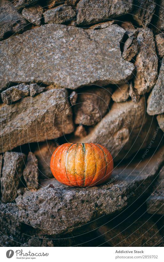 Pumpking mit Steinwandhintergrund Herbst Feste & Feiern Textfreiraum Dekoration & Verzierung Lebensmittel Frucht Halloween Ernte Oktober Orange Kürbis rustikal
