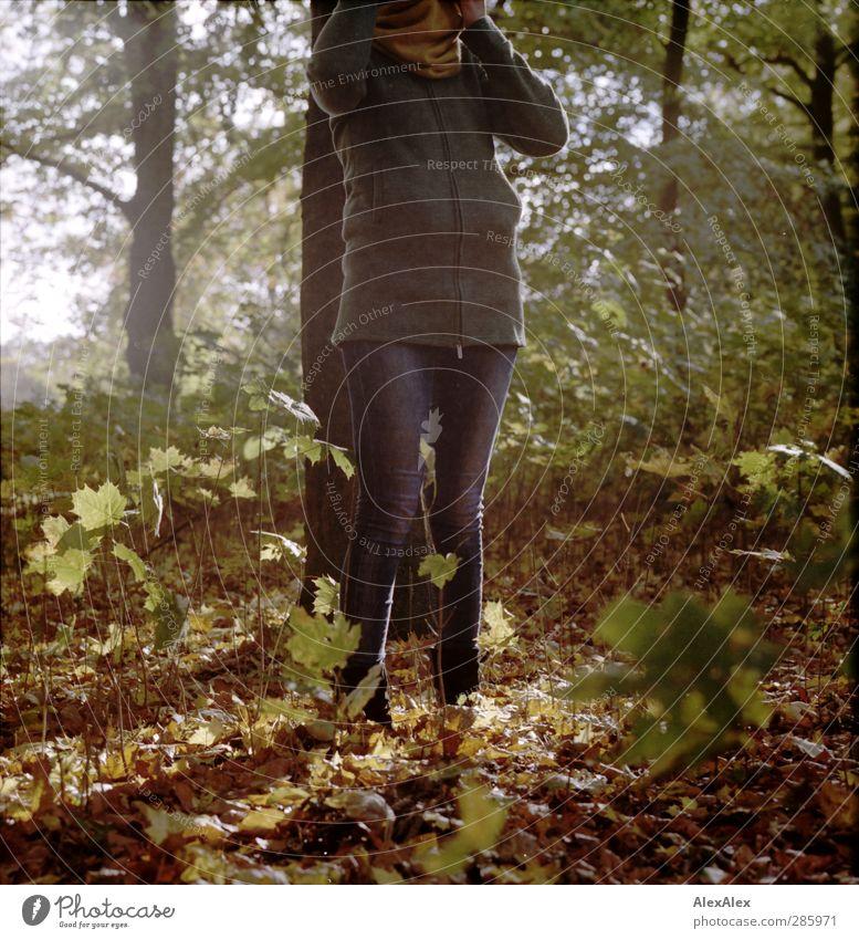 [wald-photo-tour HH] Waldwichtelin M. Natur Jugendliche grün Baum Freude Blatt Erwachsene Junge Frau Herbst Holz Beine 18-30 Jahre Stimmung braun Park