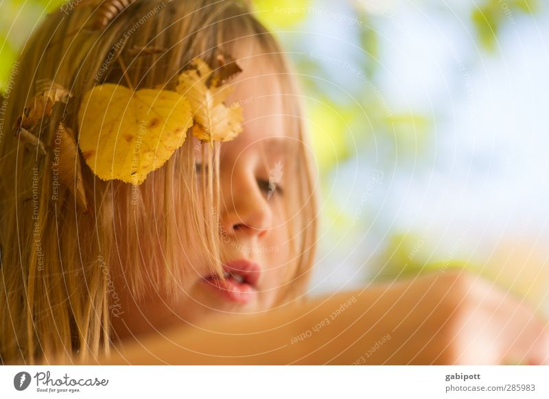 Little Miss Sunshine Mensch Kind Natur blau Sonne Mädchen Freude Blatt Gesicht gelb Leben feminin Herbst Spielen Glück Kopf