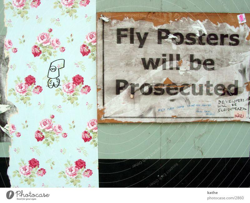 fly poster grün Blume Schriftzeichen Rose Poster Plakat Text Symbole & Metaphern mint