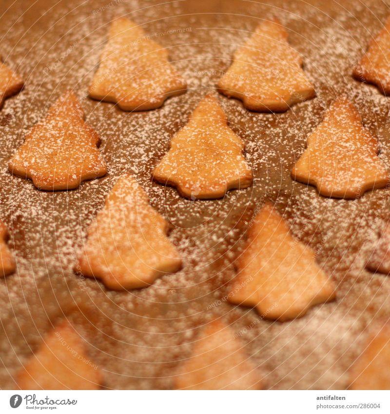 Oh Tannenbäume Weihnachten & Advent Freude Wärme Gefühle Essen braun Lebensmittel Ernährung Papier Kochen & Garen & Backen Zeichen Weihnachtsbaum Weihnachtsmann lecker Reihe Backwaren
