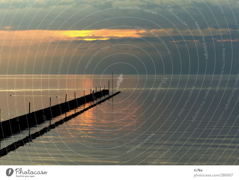 heute ist ein toller Tag Himmel Natur blau Wasser Wolken ruhig Landschaft schwarz Erholung gelb Umwelt Herbst grau Luft Horizont Schwimmen & Baden