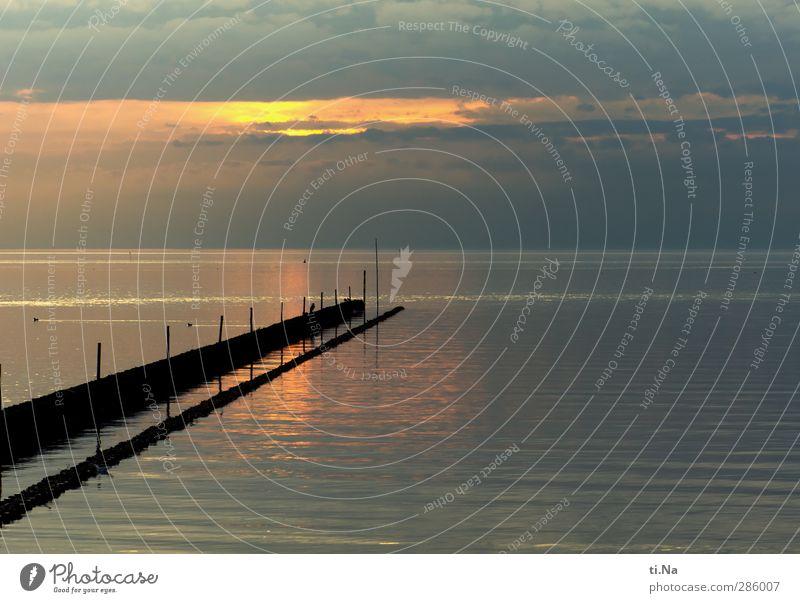 heute ist ein toller Tag Umwelt Natur Landschaft Urelemente Luft Wasser Himmel Wolken Horizont Sonnenaufgang Sonnenuntergang Herbst Nordsee Erholung leuchten