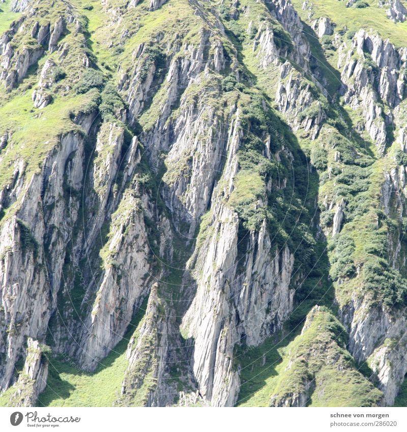 massiv Umwelt Natur Landschaft Pflanze Tier Urelemente Erde Sonne Schönes Wetter Grünpflanze Nutzpflanze Grasland gras Hügel Felsen Alpen Berge u. Gebirge
