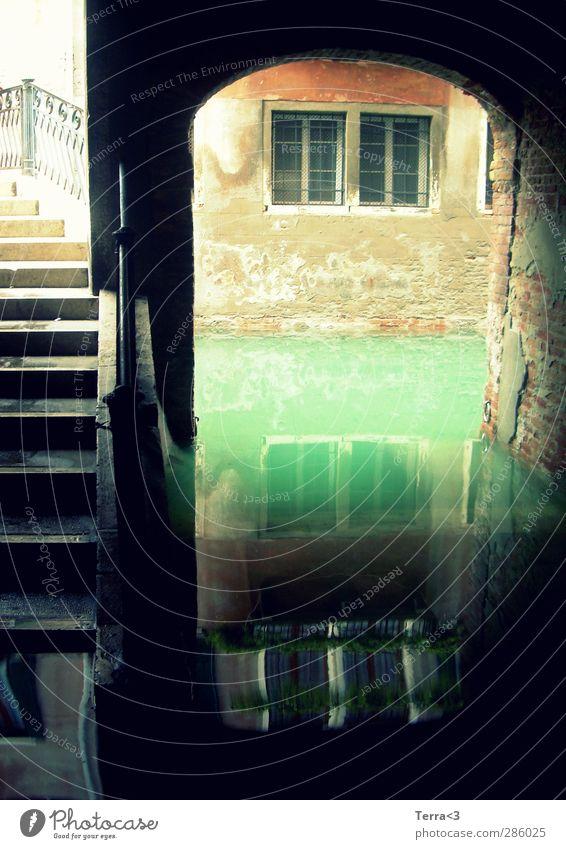 HOCHWASSER# acqua alta! Umwelt Natur Wasser Klima Flussufer Canal Grande Kanal Bach Venedig Brücke Tunnel Bauwerk Mauer Wand Fenster Sehenswürdigkeit Hochwasser