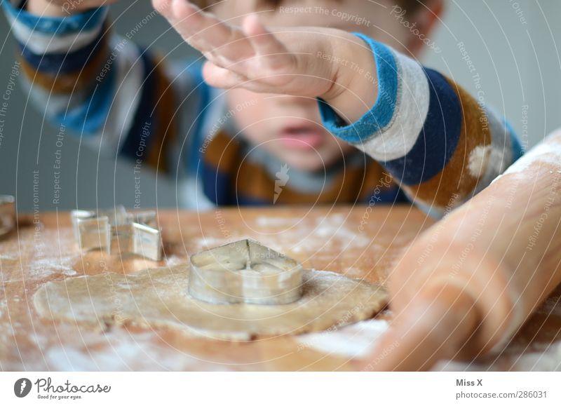 Weihnachtsbäckerei mit Fips Mensch Kind Weihnachten & Advent Hand Kindheit Lebensmittel Ernährung Hilfsbereitschaft süß Kochen & Garen & Backen Kleinkind lecker Backwaren Teigwaren Keks Plätzchen