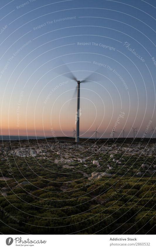 Windmühlen bei Sonnenuntergang alternativ Sauberkeit Öko Elektrizität Energie Umwelt Zukunft Ökostrom grren Landschaft Mühle Natur regenerativ Ressource Turbine