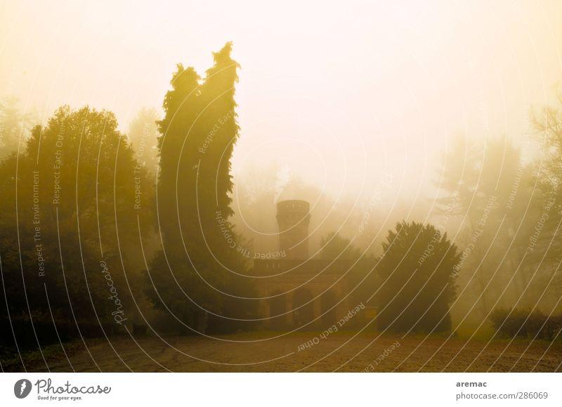 Turm im Nebel Landschaft Herbst schlechtes Wetter Regen Baum Wald Burg oder Schloss Bauwerk Gebäude Architektur Sehenswürdigkeit Wahrzeichen dunkel Stimmung