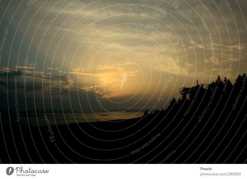 lake victoria Himmel Natur blau Pflanze Wolken ruhig Landschaft schwarz Erholung gelb Ferne Küste Freiheit See Horizont träumen