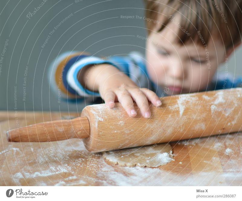 Heinzelmännchen Lebensmittel Teigwaren Backwaren Ernährung Mensch Kind Kleinkind Kindheit Hand 1 1-3 Jahre 3-8 Jahre lecker Neugier niedlich süß
