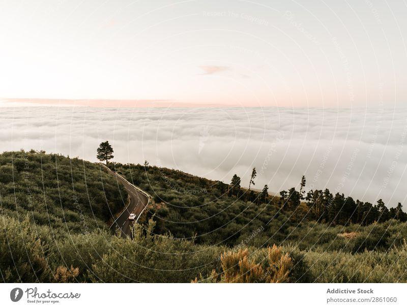 Straße auf grünem Hügel Natur Ferien & Urlaub & Reisen Landschaft Tourismus Top Wolkenlandschaft Berge u. Gebirge wandern schön Abenteuer wild Jahreszeiten