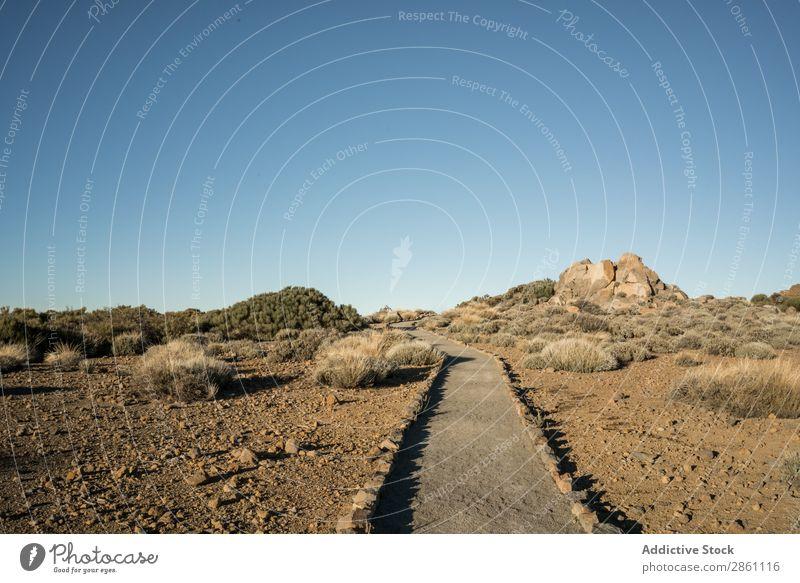 Kleiner Steg in der Wüste Natur Wege & Pfade Ferien & Urlaub & Reisen Landschaft Gang Sand Tourismus Hügel wandern regenarm Felsen Pflanze Schönes Wetter schön