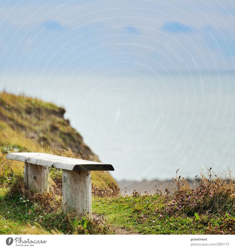 Meeresblick Erholung ruhig Ferien & Urlaub & Reisen Sommer Strand Landschaft Wasser Schönes Wetter Gras Schlucht Küste Nordsee beobachten Blick sitzen blau grün