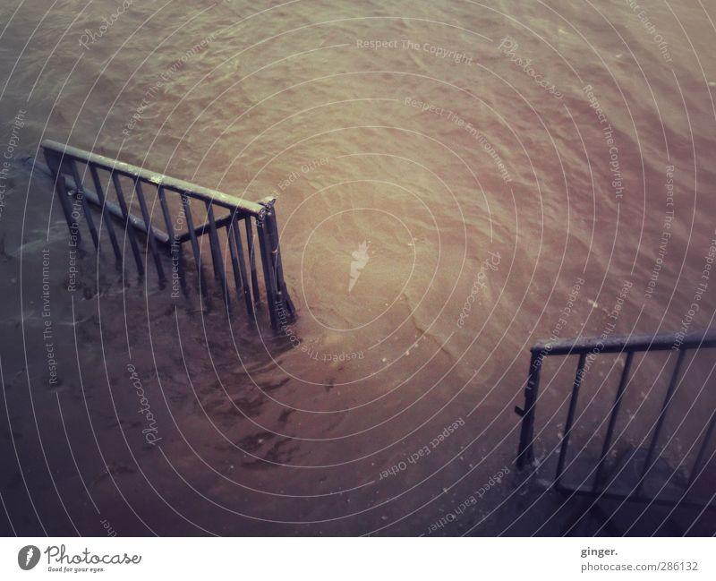 Rhein-Hochwasser Umwelt Wasser Klima Wetter Wellen Küste Flussufer bedrohlich dreckig dunkel hoch braun aufgewühlt Geländer Im Wasser treiben Strebe Tor offen