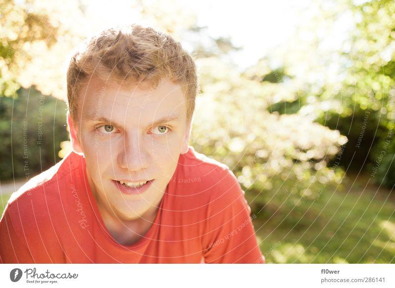 inlove maskulin Junger Mann Jugendliche 1 Mensch 18-30 Jahre Erwachsene Natur Schönes Wetter Park Wiese T-Shirt blond kurzhaarig beobachten authentisch