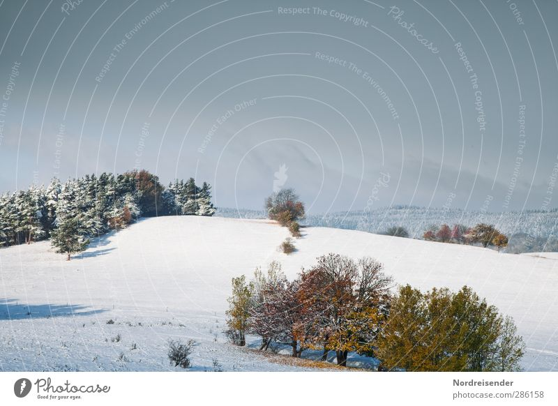Zwei Jahreszeiten Himmel Natur blau Wolken ruhig Winter Landschaft Erholung Wald kalt Herbst Schnee Stimmung Eis Wetter Feld