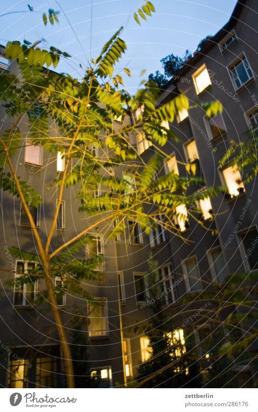 Licht Himmel Natur schön Stadt Baum Haus Umwelt Fenster Wand Herbst Architektur Mauer Gebäude Wohnung Fassade Häusliches Leben