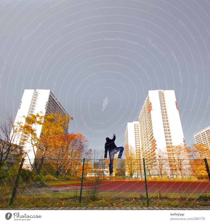 heisser herbst Mensch Natur Mann Stadt Baum Erwachsene Umwelt gelb Herbst Freiheit maskulin Park Hochhaus Schönes Wetter Zukunftsangst Klettern
