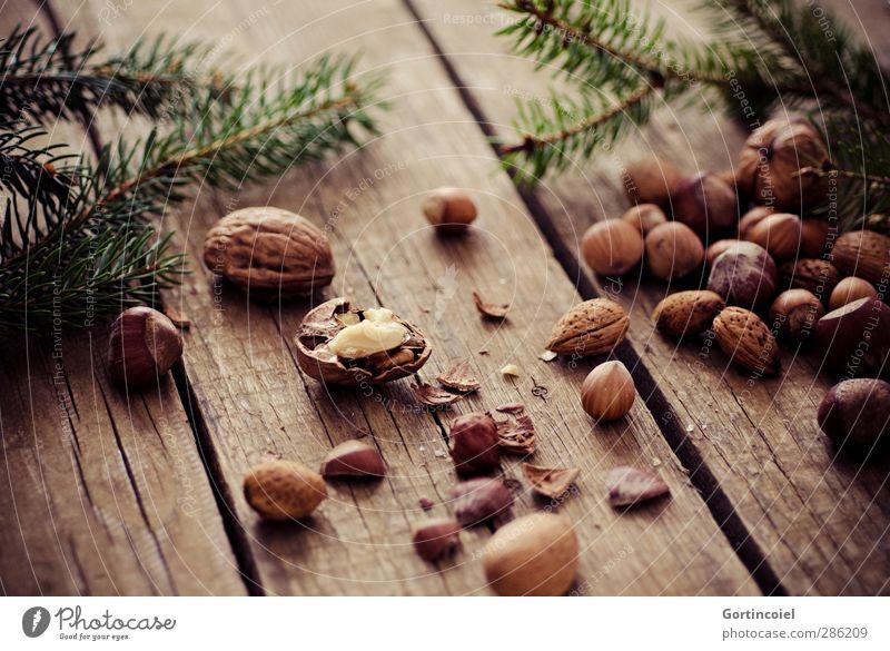 Noch 39 mal schlafen... Weihnachten & Advent Feste & Feiern braun Lebensmittel Ernährung lecker Bioprodukte Nuss Vegetarische Ernährung knackig Holztisch Walnuss Tannenzweig besinnlich Haselnuss haselnussbraun