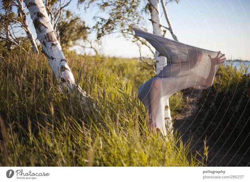 abstract bodies (18) Mensch Frau Natur Jugendliche Sommer Pflanze Baum Meer Landschaft Erwachsene Junge Frau Leben feminin Gras Küste 18-30 Jahre