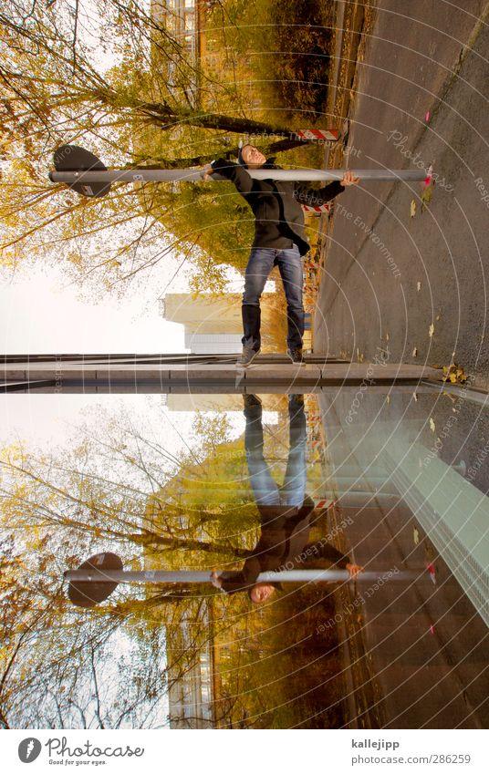 multiupload Mensch Mann Stadt Baum Erwachsene Straße Herbst Autofenster Sport maskulin Körper Schilder & Markierungen Hochhaus stehen Perspektive Fitness