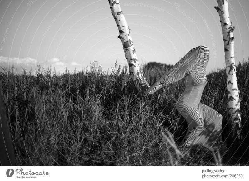 abstract bodies (19) Mensch feminin Junge Frau Jugendliche Erwachsene Leben Körper 18-30 Jahre Himmel Wolken Sommer Pflanze Baum Sträucher Wiese Küste Seeufer