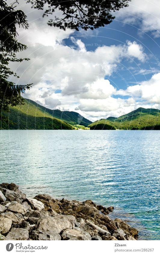 walchensee Himmel Natur blau Ferien & Urlaub & Reisen grün Sommer Baum Einsamkeit Wolken ruhig Landschaft Erholung Umwelt Berge u. Gebirge See Felsen