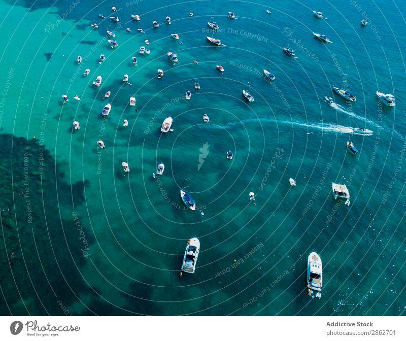 Verschiedene Motorboote, die im Meer segeln. Wasserfahrzeug Lagune Segeln Jacht Ferien & Urlaub & Reisen Tourismus tropisch Reichtum blau Sommer Küste Natur