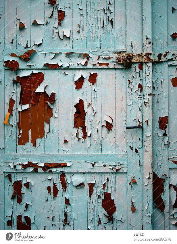 Wenn die Blätter fallen Tür Holz Metall alt braun orange rosa schwarz türkis abblättern verfallen morbid Zahn der Zeit Spuren Riss Farbe Textfreiraum Scharnier