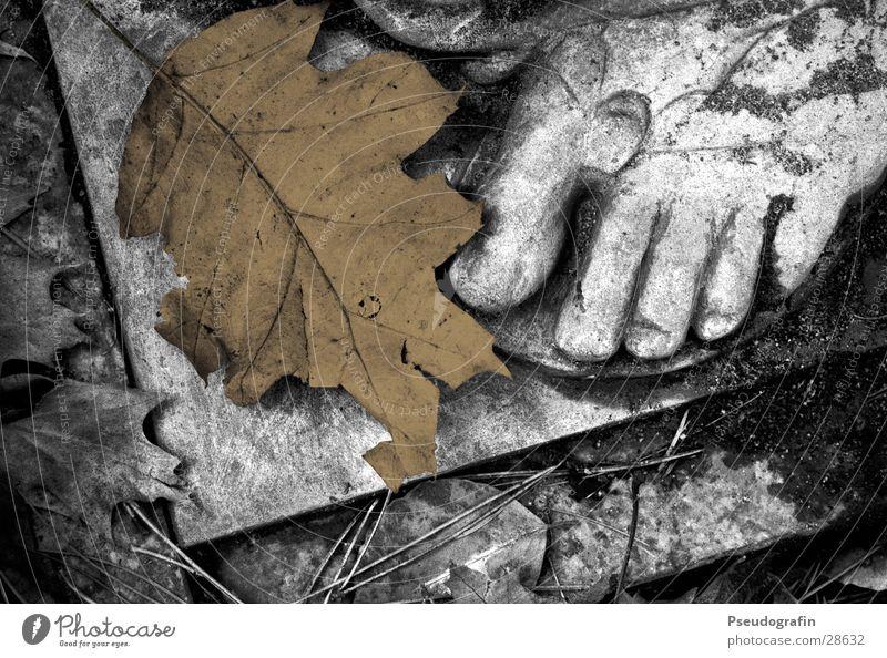 Blattfuß ruhig dunkel Gefühle Tod Herbst Traurigkeit Stein Fuß braun trist Trauer trocken gruselig Schmerz Statue