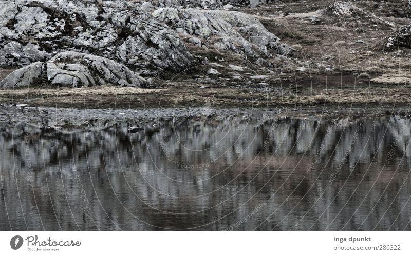 Stiller See Natur Wasser Einsamkeit ruhig Landschaft Umwelt Berge u. Gebirge Felsen natürlich Abenteuer Seeufer rein ausdruckslos Gewässer karg steinig