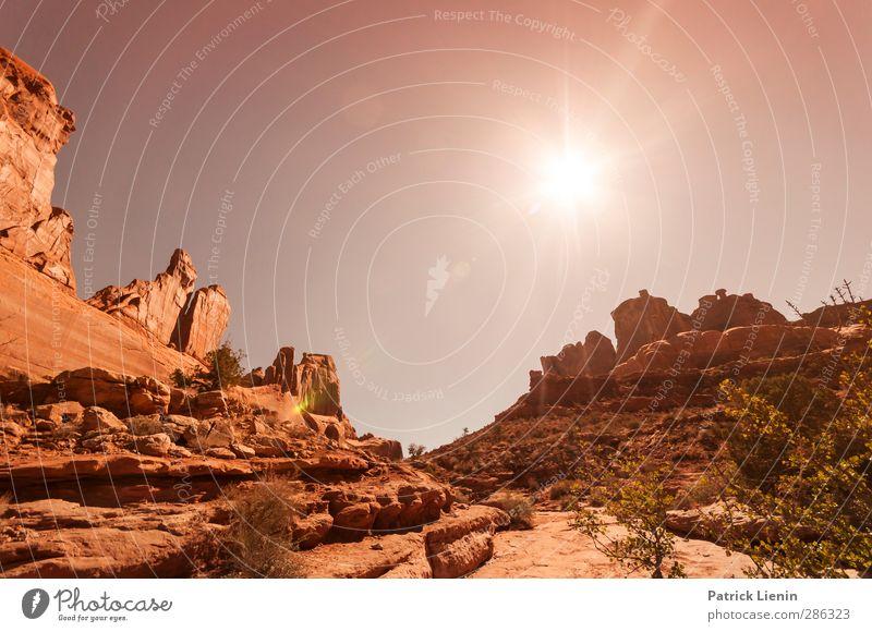 Day Dream Tourismus Abenteuer Ferne Freiheit Sommer Sonne Umwelt Natur Landschaft Pflanze Urelemente Luft Himmel Sonnenaufgang Sonnenuntergang Sonnenlicht Klima